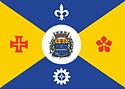 Bandeira da cidade de Barueri - SP